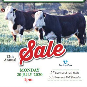 2020 Bull and Female Sale